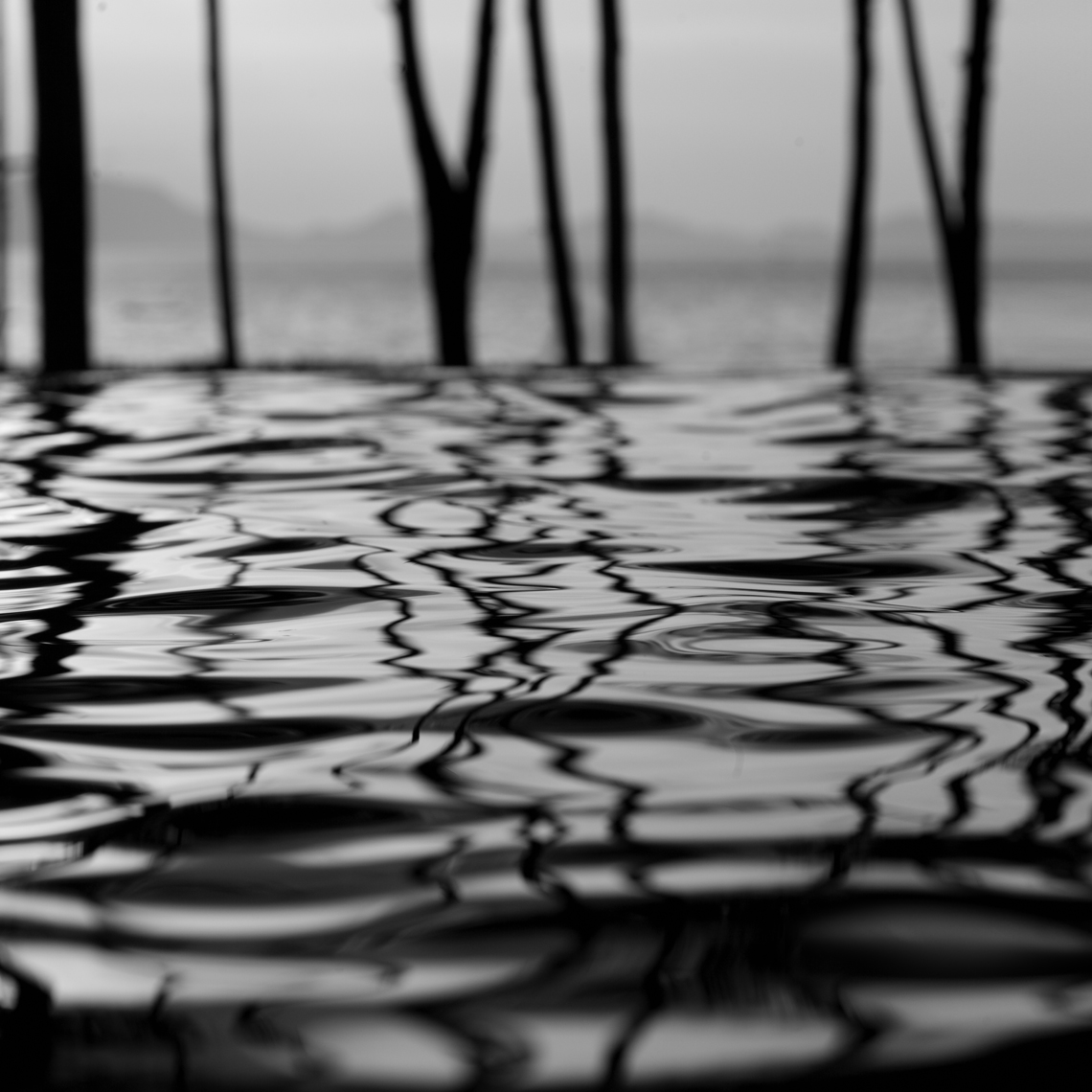 103_Art_SticksAndRipples_E9Y0134_35x35_BW_urbanDigital